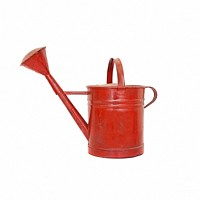 Painted Galvi Watering Can